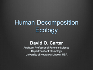 Human Decomposition Ecology