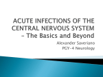 Acute and Chronic Infections of the CNS