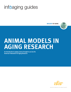 Infoaging Guide to Animal Models in Aging Research