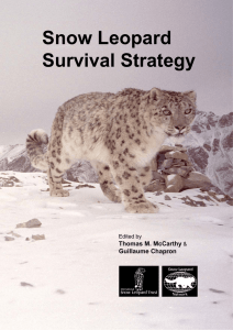 Snow Leopard Survival Strategy