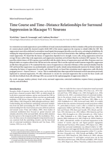 Time Course and Time–Distance Relationships for Surround