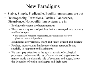 New Paradigms - School of Environmental and Forest Sciences