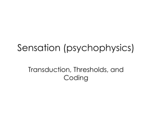 Psychophysics ppt. - Ms. Engel @ South