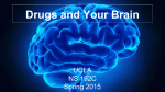 Introduction to drugs and the brain