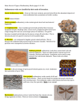 Notes from 6.2 Types of Sedimentary Rocks pages 141