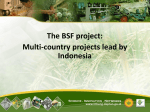 Multi-country projects lead by Indonesia BSF project I