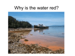 Why is the water red?