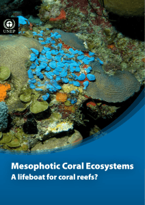 Mesophotic Coral Ecosystems - UNEP Document Repository Home
