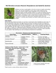 Mid-Elevation Arizona Monarch Waystations and Butterfly Gardens