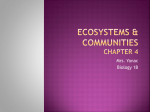 Ecosystems (ch 4)