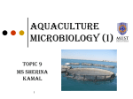 9.Aquaculture microbiology students version