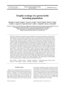 Trophic ecology of a green turtle breeding population