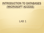 introduction to databases (microsoft access)