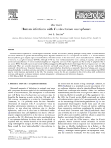Human infections with Fusobacterium necrophorum