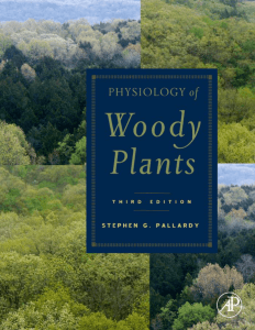 Physiology of Woody Plants, Third Edition