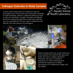 Pathogen Detection in Water Samples