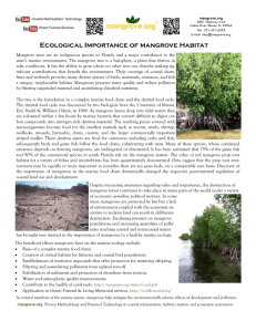Ecological Importance of mangrove Habitat
