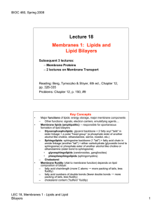 Lecture 18 Membranes 1: Lipids and Lipid Bilayers