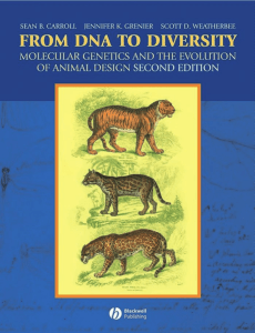 From DNA to diversity: molecular genetics and the evolution of