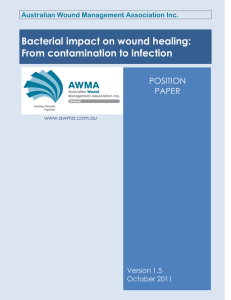 Bacterial impact on wound healing: From contamination to infection