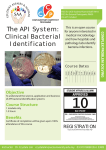 The API System: Clinical Bacterial Identification
