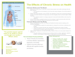 Chronic Stress and The Body