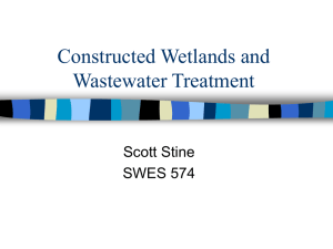Constructed Wetlands and Wastewater Treatment
