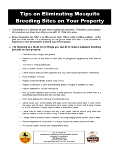 Tips on Eliminating Mosquito Breeding Sites on Your