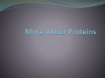 About Proteins