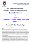 19th May 2015 - Prof Robert Brown