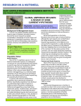 global amphibian declines: a review of some current hypotheses