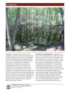 Vernal Pool - Michigan Natural Features Inventory