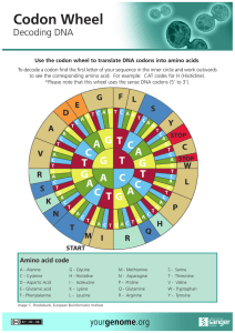 Codon Wheel - Your Genome