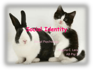 chapter5-aspects-of-social-identity-roji