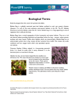 Ecological Terms - Moors for the Future