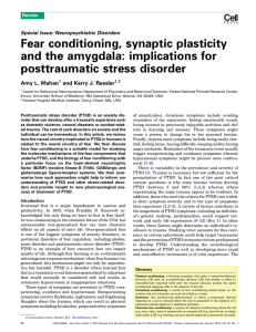 Fear conditioning, synaptic plasticity and the amygdala
