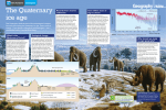 The Quaternary ice age