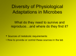 Diversity of Physiological Adaptations in Microbes