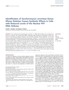 Identification of Saccharomyces cerevisiae Genes Whose Deletion