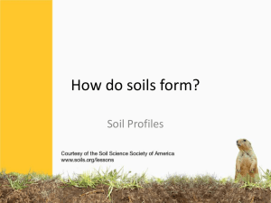 How do soils form?