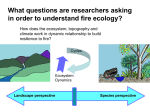 fire ecology questions