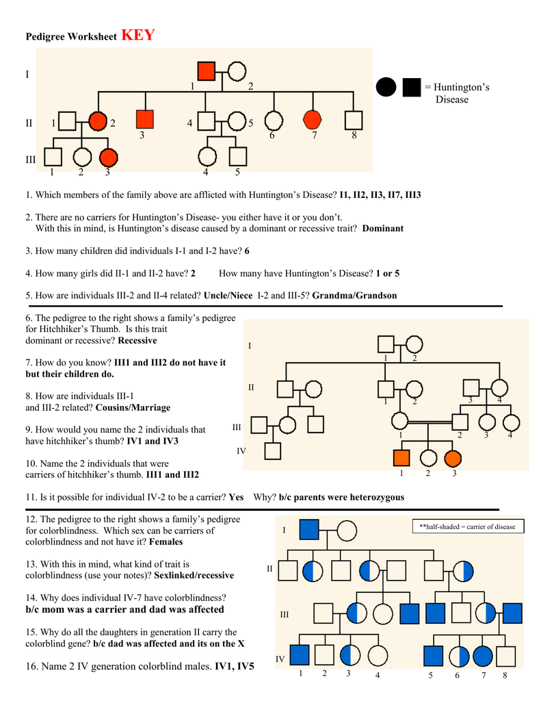 worksheet Genetic Pedigree Worksheet answer key