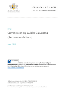 Commissioning Guide: Glaucoma (Recommendations)
