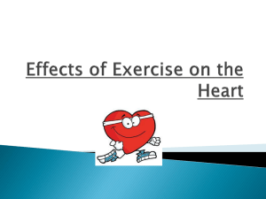 Effects of Exercise on the Heart