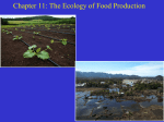 ch11 The Ecology of Food Production