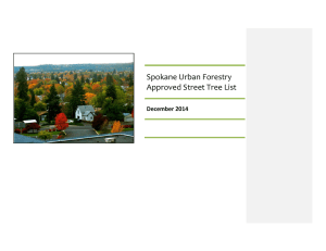 Spokane Urban Forestry Approved Street Tree List