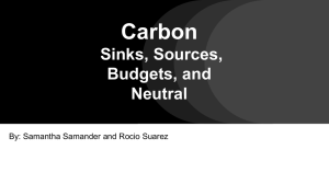 Carbon Sinks, Sources, Budgets, and Neutral