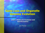 Gene Loss and Organelle Genome Evolution