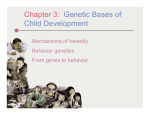 Chapter 3: Genetic Bases of Child Development