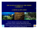 The Wider Caribbean Region - International Coral Reef Initiative